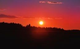 Puesta del sol sobre el bosque Fotografía de archivo libre de regalías