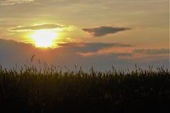 Puesta del sol sobre el campo Fotografía de archivo libre de regalías