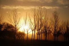 Puesta del sol sobre el campo de la Argentina Foto de archivo