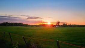 Puesta del sol sobre el campo verde Imágenes de archivo libres de regalías