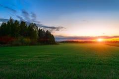 Puesta del sol sobre el campo verde Foto de archivo