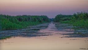 Puesta del sol sobre el canal en el delta de Danubio imagen de archivo libre de regalías