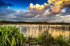 Puesta del sol sobre el lago por completo de árboles secos Imagen de archivo libre de regalías