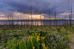 Puesta del sol sobre el lago Yellowstone Fotografía de archivo libre de regalías