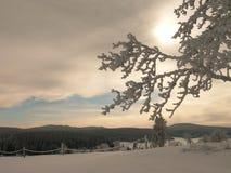 Puesta del sol sobre el paisaje nevoso blanco del invierno Fotos de archivo