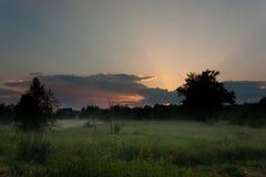 Puesta del sol sobre el prado debajo de la niebla Fotos de archivo
