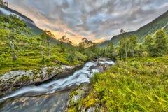 Puesta del sol sobre el río salvaje a través del bosque del abedul en Noruega Imagenes de archivo