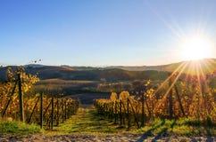 Puesta del sol sobre el viñedo de Langhe en Piamonte Italia Imagen de archivo