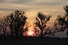 Puesta del sol sobre Homerville Georgia Fotografía de archivo libre de regalías