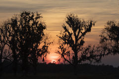 Puesta del sol sobre Homerville Georgia Foto de archivo libre de regalías