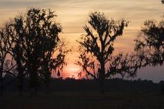 Puesta del sol sobre Homerville Georgia Imágenes de archivo libres de regalías