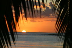Puesta del sol sobre Isla Mauricio con las palmas que enmarcan la puesta del sol Imagenes de archivo