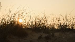 Puesta del sol sobre la duna de arena. Foto de archivo libre de regalías