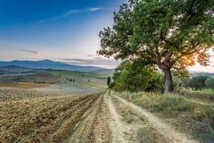 Puesta del sol sobre la tierra de Toscana Foto de archivo