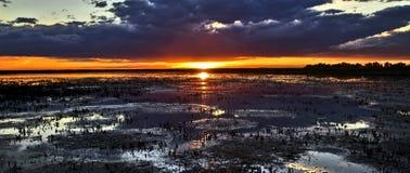 Puesta del sol sobre las camas de lámina cosechadas del Camargue imagen de archivo libre de regalías