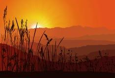 puesta del sol sobre las montañas con la silueta de la hierba Foto de archivo libre de regalías