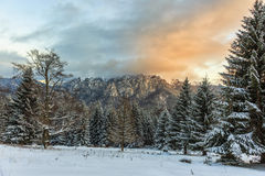 Puesta del sol sobre las montañas y el bosque nevosos Imagenes de archivo