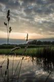 Puesta del sol sobre los campos Foto de archivo libre de regalías