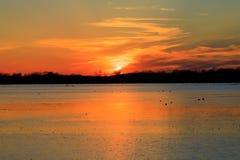 Puesta del sol sobre los campos inundados del arroz usados para cazar durante la estación del pato Fotos de archivo