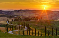 Puesta del sol sobre los campos, los árboles de cipreses y la carretera con curvas verdes i foto de archivo