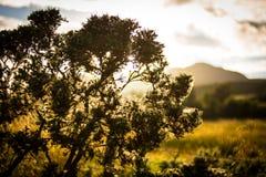 Puesta del sol sobre paisaje Fotografía de archivo libre de regalías