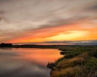 Puesta del sol sobre pantano del arbolado Fotografía de archivo