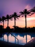 Puesta del sol sobre piscina con las palmeras en silueta Imagen de archivo