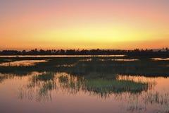 Puesta del sol sobre pista del pantano foto de archivo libre de regalías