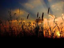 Puesta del sol sobre prados imagen de archivo