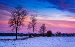 Puesta del sol sobre árboles y campos de granja nevados en Federico rural Fotos de archivo libres de regalías