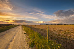 Puesta del sol sobre ricefield seco Foto de archivo libre de regalías