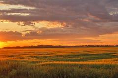 Puesta del sol sobre tierras de labrantío Foto de archivo libre de regalías