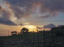 Puesta del sol sobre un prado tomado en Fawwara, Malta Fotos de archivo libres de regalías