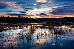 Puesta del sol sobre una región pantanosa en Ontario, Canadá imagen de archivo libre de regalías