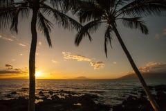 Puesta del sol Sunstar de la palmera de Hawaii Imagen de archivo libre de regalías