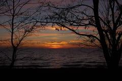 Puesta del sol tirada a través de árboles con el cielo anaranjado imagenes de archivo