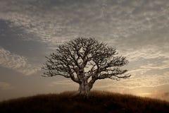 Puesta del sol tranquila imagenes de archivo