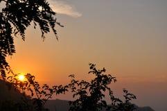Puesta del sol a través de árboles Imagen de archivo libre de regalías