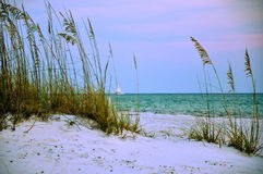 Puesta del sol a través de la avena del mar con el velero Fotografía de archivo libre de regalías