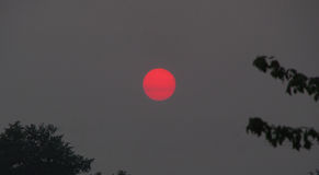 Puesta del sol a través del humo del incendio forestal imágenes de archivo libres de regalías