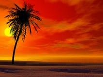 Puesta del sol tropical Stock de ilustración