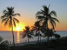Puesta del sol tropical Fotografía de archivo libre de regalías