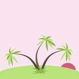 Puesta del sol tropical con las palmas Fotos de archivo libres de regalías