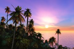 Puesta del sol tropical de las palmeras de la isla ilustración del vector