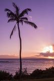 Puesta del sol tropical de Maui Foto de archivo