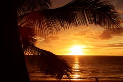 Puesta del sol tropical de oro Imagen de archivo libre de regalías