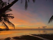 Puesta del sol tropical de oro con las palmeras de la silueta Fotos de archivo