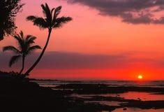 Puesta del sol tropical dramática Fotografía de archivo