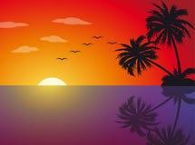 Puesta del sol tropical en la playa Imagen de archivo libre de regalías