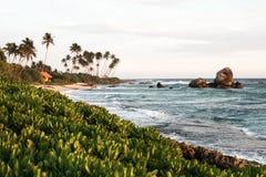 Puesta del sol tropical hermosa con silhoette de las palmeras en la playa Imagenes de archivo